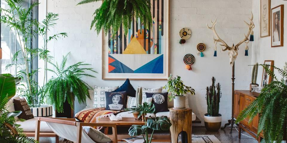 plantas de interior estilo boho chic